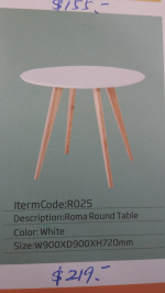 Roma round table